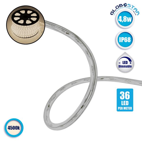 Φωτοσωλήνας LED Διάφανος 1m 4.8W/m 230V 36 LED/m Δίοδος 12mm 450lm/m Αδιάβροχος IP68 Φυσικό Λευκό 4500k Dimmable GloboStar 22513